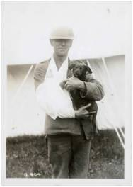 Wounded Soldier with Pet
